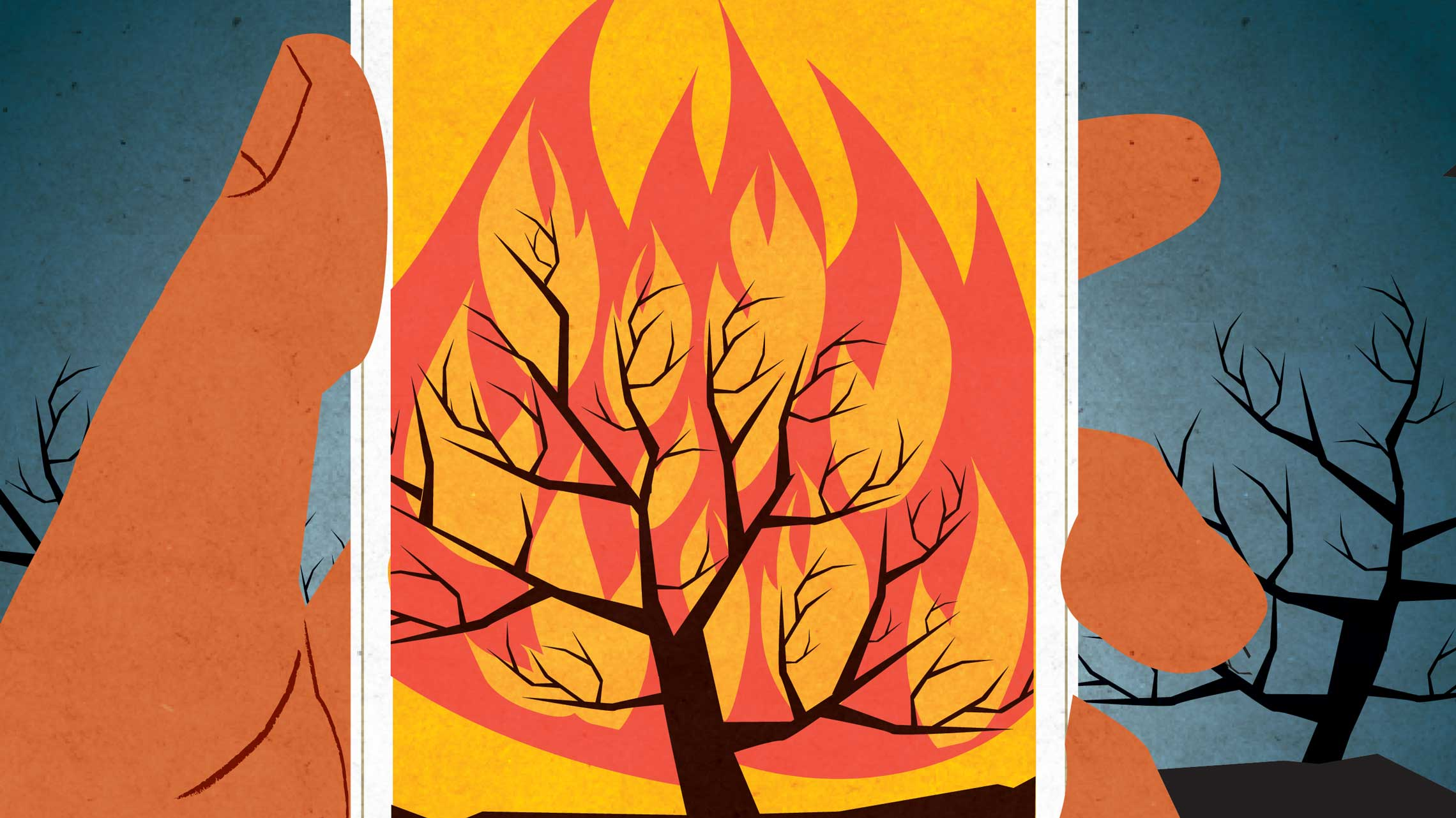 burning bushes u2014 oregon humanities