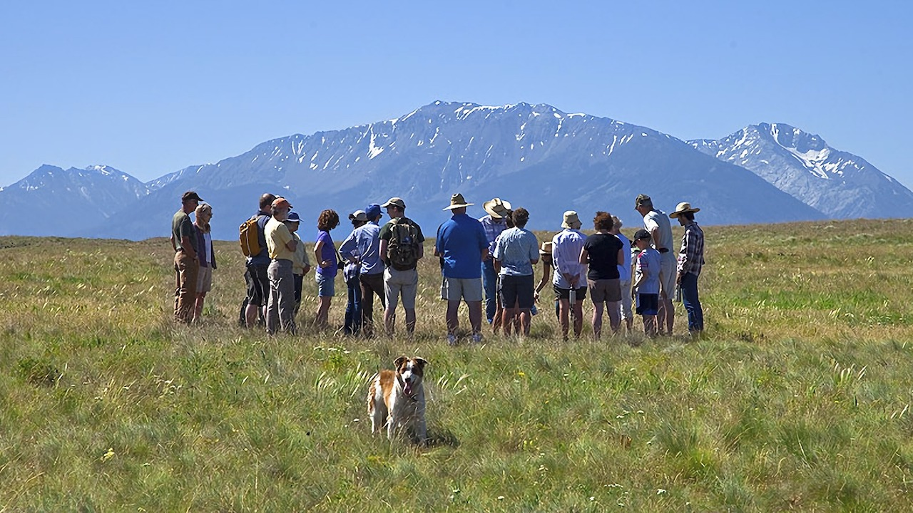 A group of people stand in a field with the Wallowa Mountains in the background and a cheerful dog in the foreground.